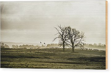 Wood Print featuring the photograph Crane Hill by Torbjorn Swenelius