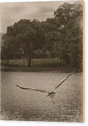 Crane In Flight Wood Print