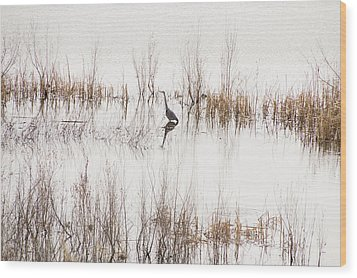 Crane In Reeds Wood Print by Laura Pratt