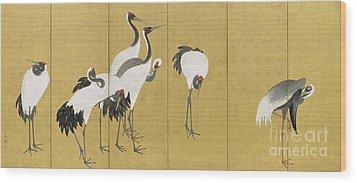 Cranes Wood Print by Maruyama Okyo