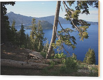 Crater Lake 9 Wood Print by Carol Groenen