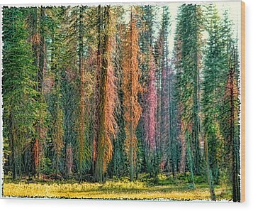 Crayon Forest Wood Print by Michael Cleere
