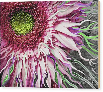 Crazy Daisy Wood Print by Christopher Beikmann