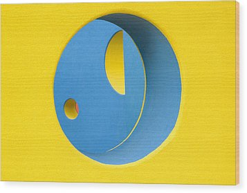 Crazy Sideways Smiley Face Wood Print by John Gusky