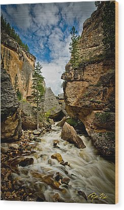 Crazy Woman Canyon Wood Print by Rikk Flohr