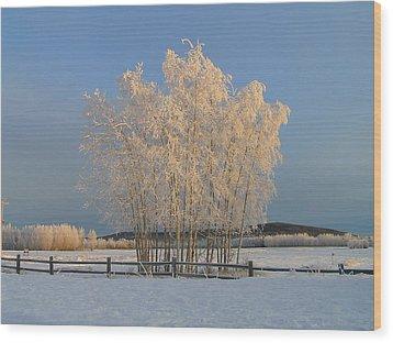 Creamer Field Wood Print