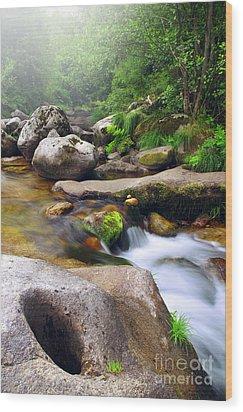 Creek Wood Print by Carlos Caetano
