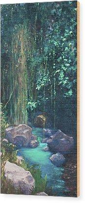 Creek Chincultik Wood Print by Carla Woody