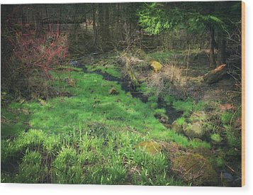Creek - Spring At Retzer Nature Center Wood Print by Jennifer Rondinelli Reilly - Fine Art Photography
