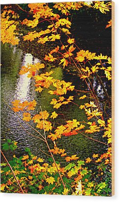 Wood Print featuring the photograph Creekside Colors by Lynn Bawden