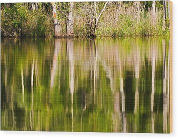Wood Print featuring the photograph Creekside Reflections by Bob Decker