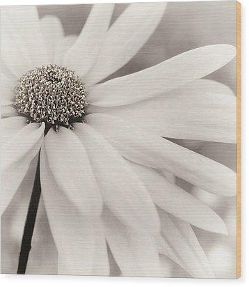 Wood Print featuring the photograph Creme Fraiche In Black And White by Darlene Kwiatkowski