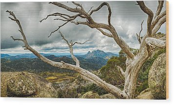 Cresta Valley - Mt Buffalo Wood Print by Mark Lucey