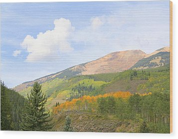 Crested Butte Wood Print by Jessie Foster