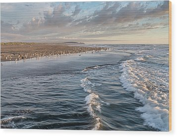 Wood Print featuring the photograph Crests And Birds by Greg Nyquist