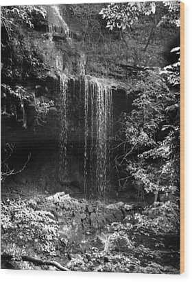 Crikfall Wood Print by Curtis J Neeley Jr