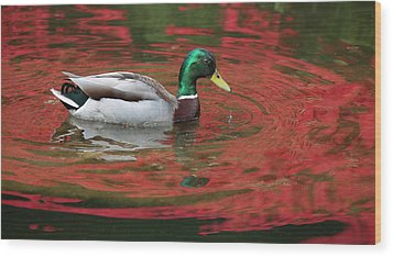 Wood Print featuring the photograph Crimson Reflections by Elvira Butler