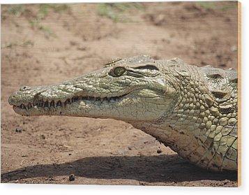 Crocodile Wood Print