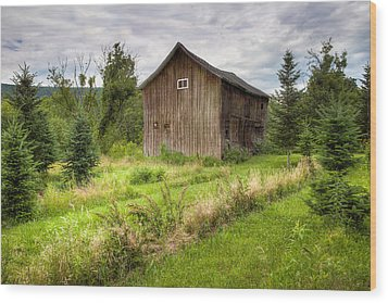 Wood Print featuring the photograph Crooked Old Barn On South 21 - Finger Lakes New York State by Gary Heller