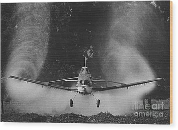 Crop Duster Wood Print by Jim Wright