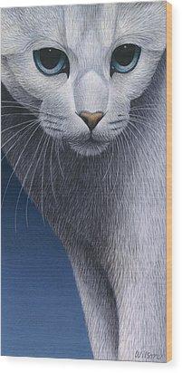 Cropped Cat 5 Wood Print by Carol Wilson