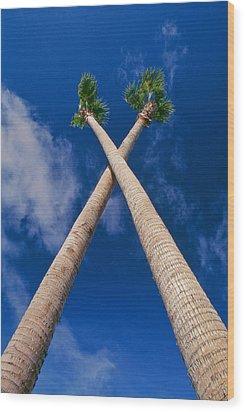 Crossed Palm Trees Wood Print by Rich Iwasaki