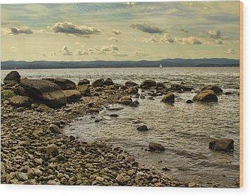 Croton Coastline Wood Print by Alexander Mendoza