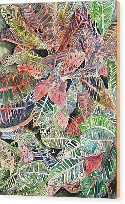 Croton Tropical Art Print Wood Print by Derek Mccrea