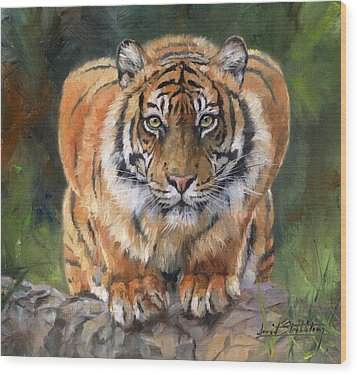 Wood Print featuring the painting Crouching Tiger by David Stribbling