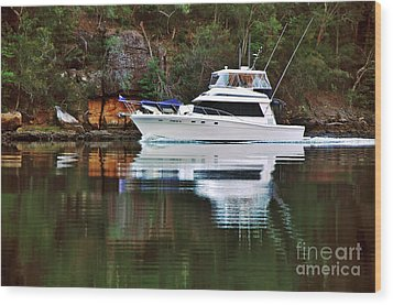 Wood Print featuring the photograph Cruising The River By Kaye Menner by Kaye Menner