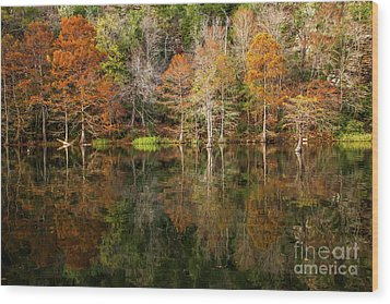 Wood Print featuring the photograph Crystal Clear by Iris Greenwell