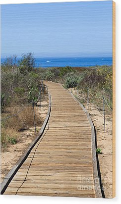 Crystal Cove State Park Wooden Walkway Wood Print by Paul Velgos