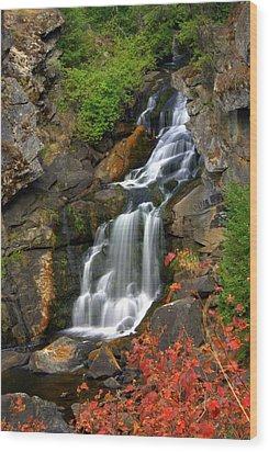 Crystal Falls Wood Print by Marty Koch