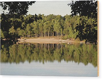 Wood Print featuring the photograph Crystal Lake In Whitehall Mi by Ferrel Cordle