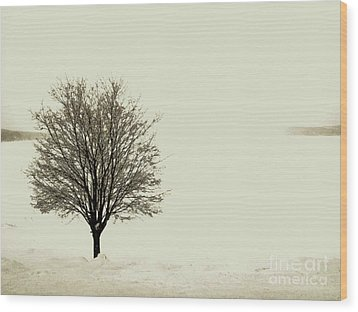 Crystal Lake In Winter Wood Print by Desiree Paquette