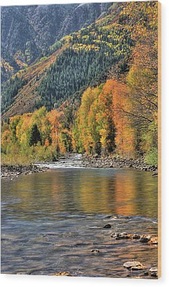 Crystal River Fall Color Wood Print