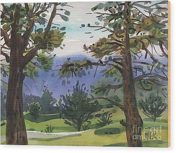Crystal Springs Fairway Wood Print by Donald Maier