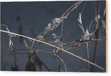 Crystals Wood Print by Annette Berglund