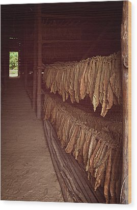 Wood Print featuring the photograph Cuban Tobacco Shed by Joan Carroll