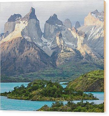 Cuernos Del Paine - Patagonia Wood Print by Carl Amoth