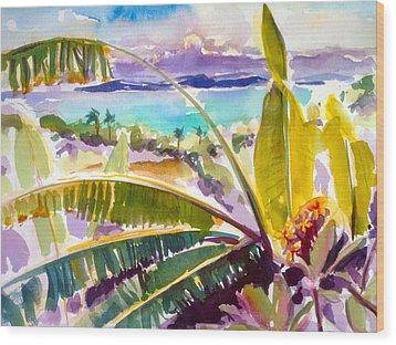 Culebra And Bananas Wood Print by Barbara Richert