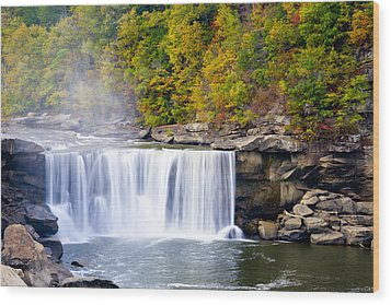 Cumberland Falls Wood Print by Alexey Stiop