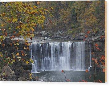 Cumberland Falls In Gold Wood Print