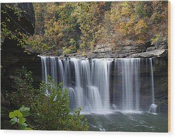 Cumberland Falls In Green Wood Print