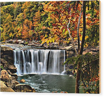 Wood Print featuring the photograph Cumberland Falls by Ken Frischkorn