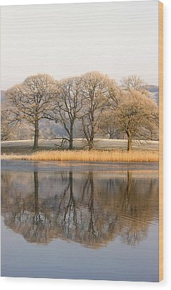 Cumbria, England Lake Scenic With Wood Print by John Short