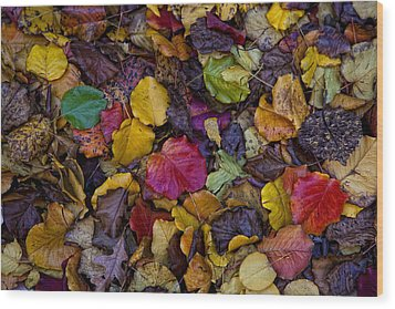Curbside Leaf Litter Wood Print by Robert Ullmann