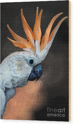 Curious Cockatoo  Wood Print by Norman  Andrus