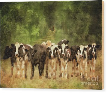 Wood Print featuring the digital art Curious Cows by Lois Bryan