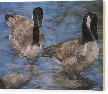 Curious Geese Wood Print by Meagan  Visser